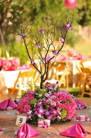 Orchid Tree Centerpiece