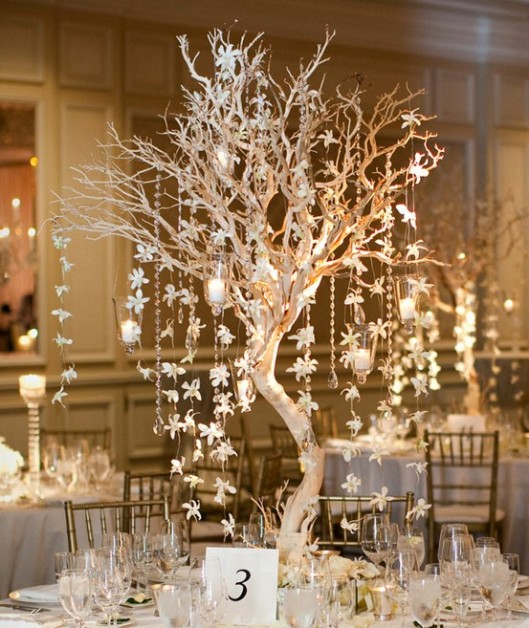 Orchid Tree With Candles