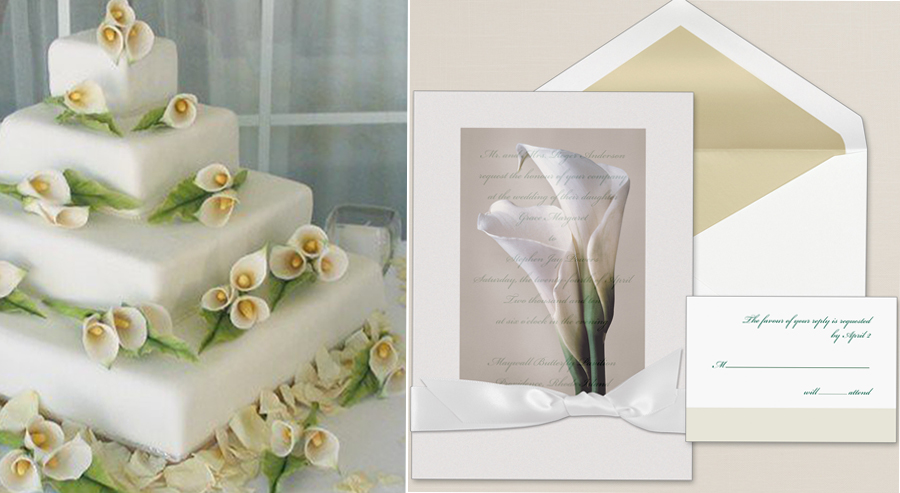 Bridal Bliss Invitation with Coordinating Cake