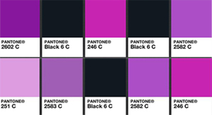 Pantone Purple and Black