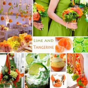 Click to Enlarge - Lime and Tangerine Color Story