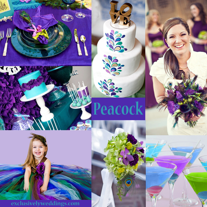 Your wedding colors peacock exclusively weddings blog for Best wedding colour themes