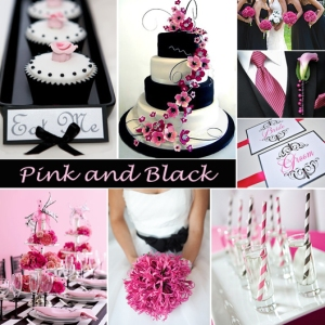 Click to Enlarge - Pink and Black Color Story