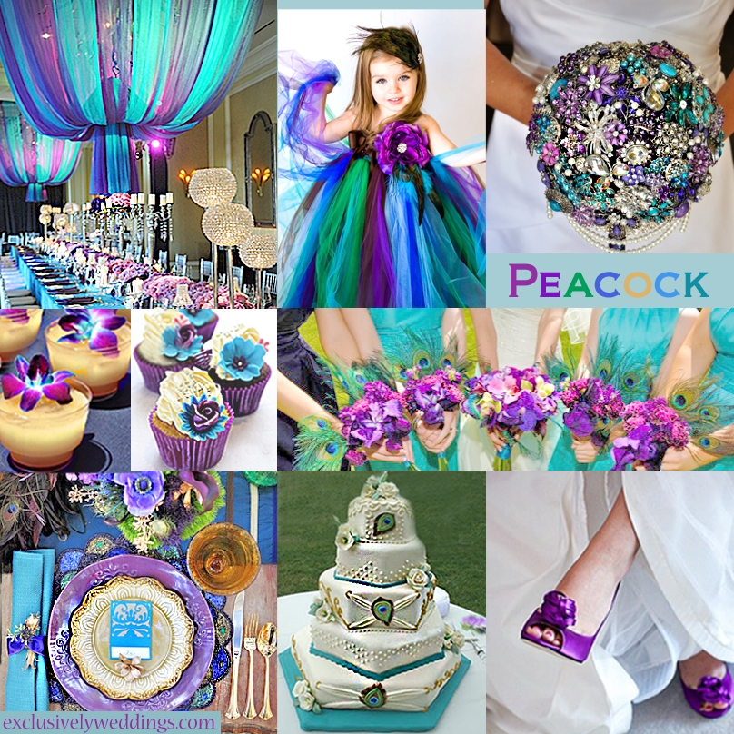 Purple wedding color combination options exclusively weddings peacock wedding colors junglespirit Images