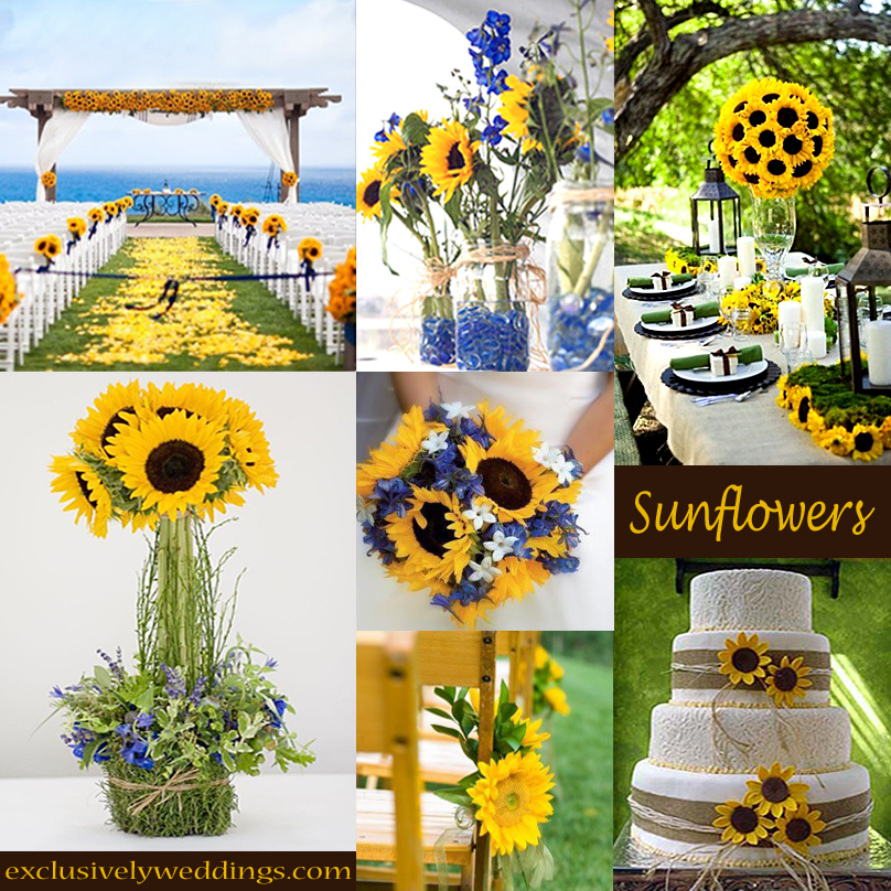 Your wedding theme calla lilies sunflowers or daisies sunflowers wedding theme junglespirit Gallery