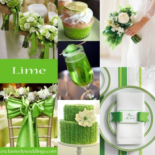 Lime Green Wedding Color