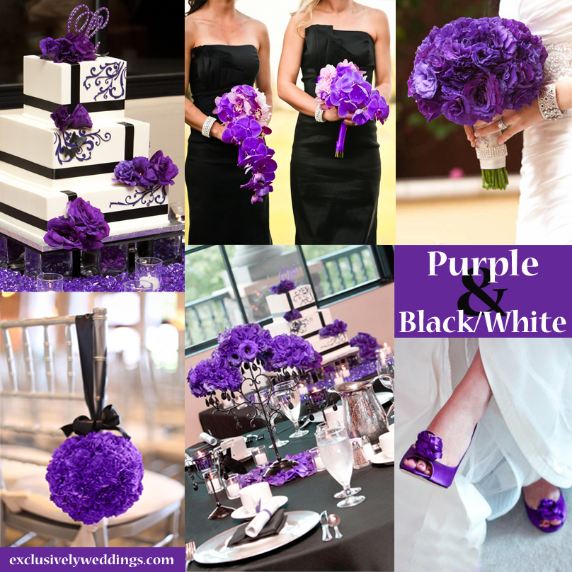 Purple wedding color combination options exclusively weddings or this collage is blackwhite and purple you can add an accent of gold junglespirit Image collections
