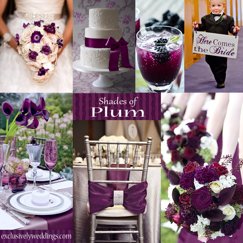 Plum wedding color four fantastic choices exclusively weddings plumweddingcolor junglespirit Image collections