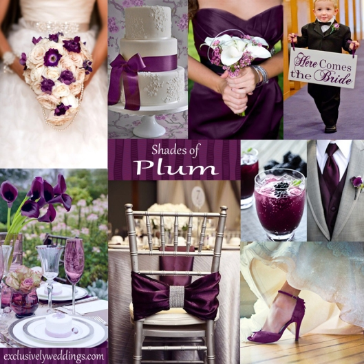 Shades of Plum Wedding Color