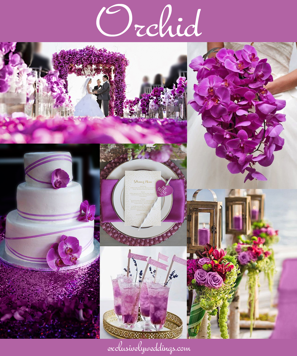 Your Wedding Color - Don\'t Overlook Five Luscious Shades of Purple ...