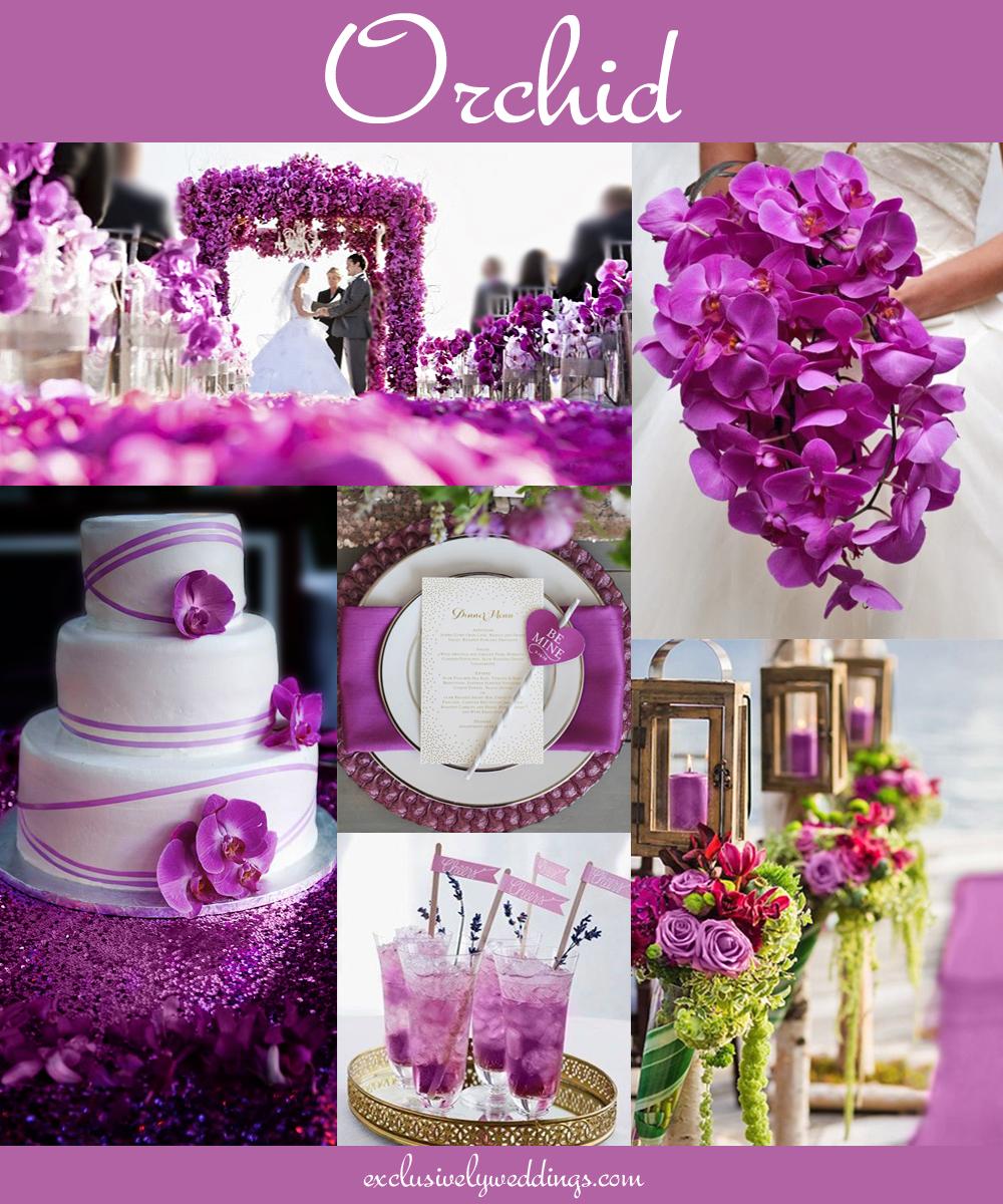 orchid_wedding_color