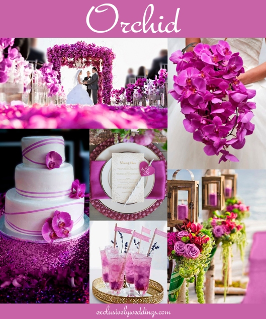Orchid_Wedding_Color