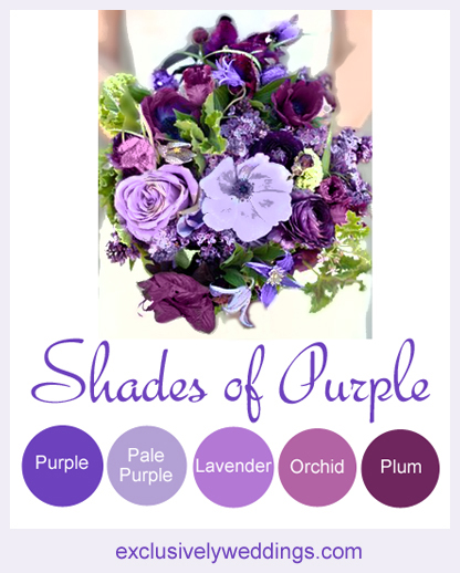 Shades_of_Purple