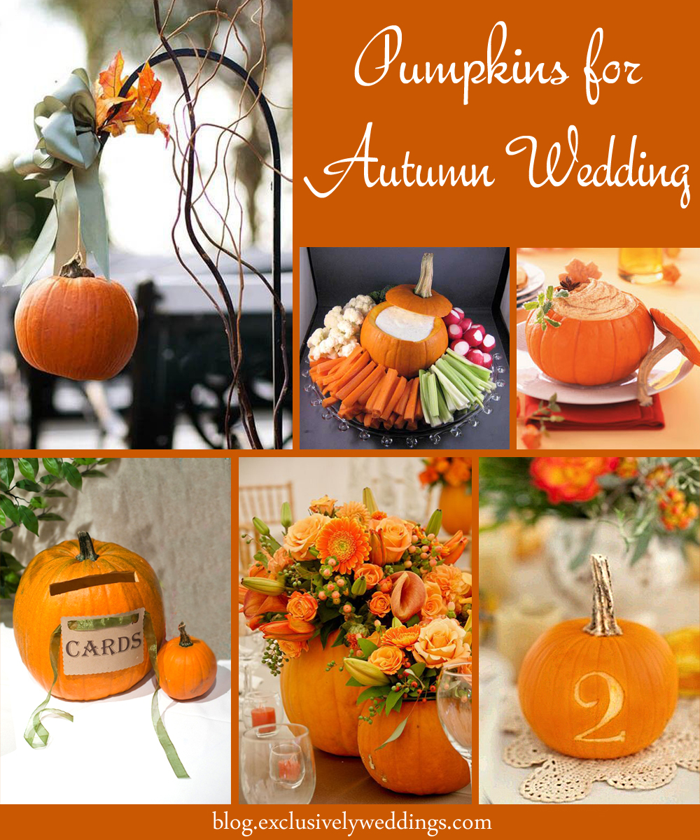 Let mother nature decorate your fall wedding exclusively weddings pumpkins for autumn wedding decor junglespirit Images